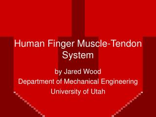 Human Finger Muscle-Tendon System