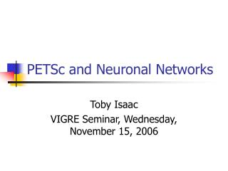 PETSc and Neuronal Networks