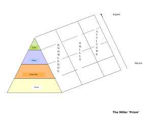 The Miller 'Prism'