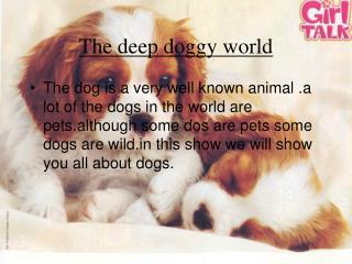 The deep doggy world
