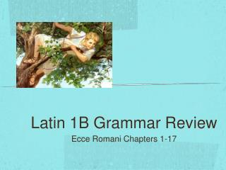 Latin 1B Grammar Review