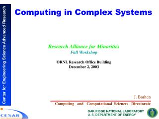 Computing in Complex Systems