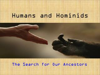 Humans and Hominids