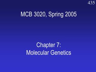 MCB 3020, Spring 2005 Chapter 7: Molecular Genetics