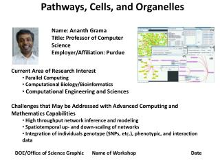 Pathways, Cells, and Organelles