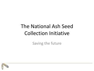 The National Ash Seed Collection Initiative