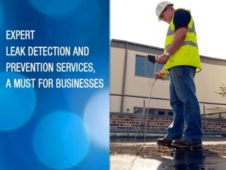 Expert leak detection and prevention services in UK