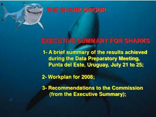 THE SHARK GROUP