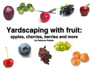 Yardscaping with fruit:  apples, cherries, berries and more by Rebecca Koetter