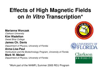 Effects of High Magnetic Fields on  In Vitro  Transcription*