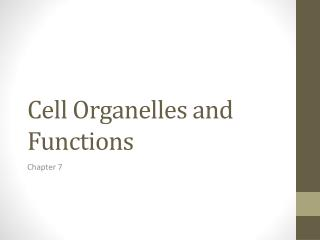 Cell Organelles and Functions