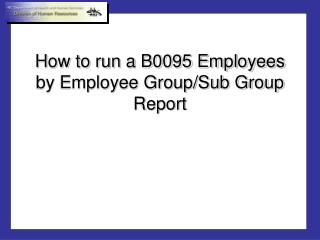How to run a B0095 Employees by Employee Group/Sub Group Report
