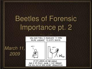 Beetles of Forensic Importance pt. 2