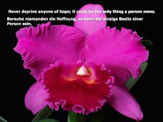 Never deprive anyone of hope; it could be the only thing a person owns.