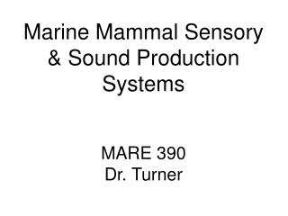 Marine Mammal Sensory & Sound Production Systems MARE 390 Dr. Turner