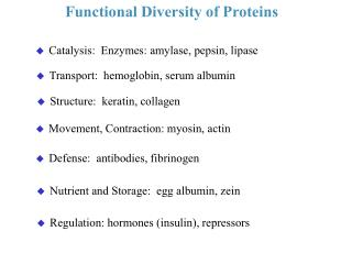 Functional Diversity of Proteins