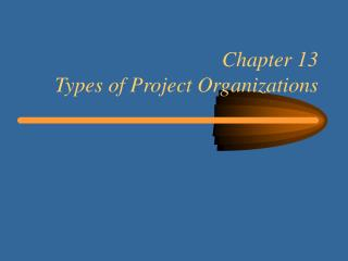 Chapter 13 Types of Project Organizations