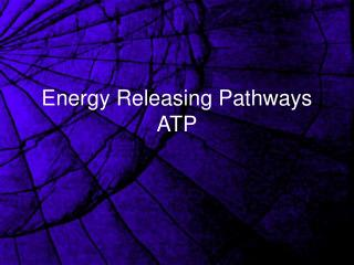 Energy Releasing Pathways ATP