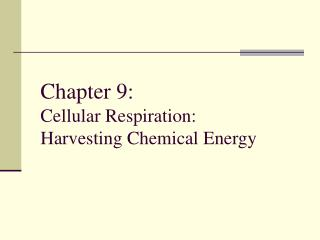 Chapter 9:       Cellular Respiration: Harvesting Chemical Energy