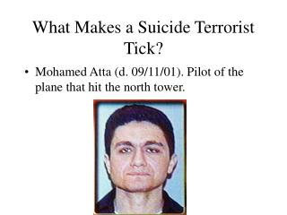 What Makes a Suicide Terrorist Tick?