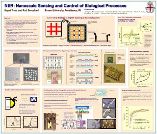 NER: Nanoscale Sensing and Control of Biological Processes