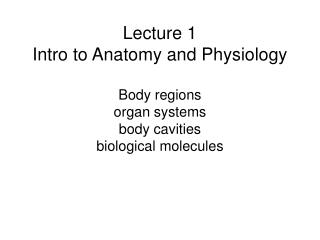 Lecture 1 Intro to Anatomy and Physiology  Body regions organ systems body cavities biological molecules