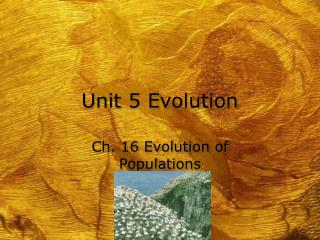 Unit 5 Evolution