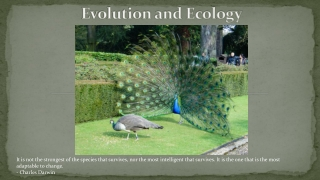 Chapter 3 Evolution, Biodiversity, and Population Ecology