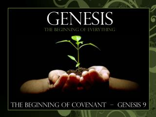 The Beginning of Covenant  –  genesis 9