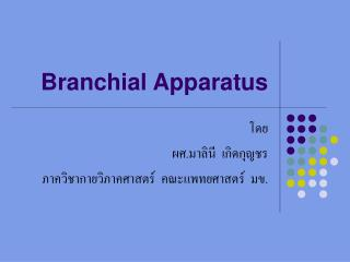 Branchial Apparatus