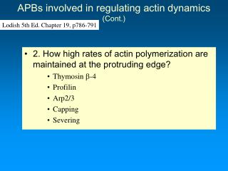 APBs involved in regulating actin dynamics (Cont.)