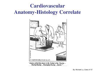 Cardiovascular Anatomy-Histology Correlate