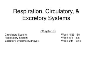 Respiration, Circulatory, & Excretory Systems