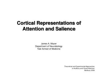 Cortical Representations of Attention and Salience