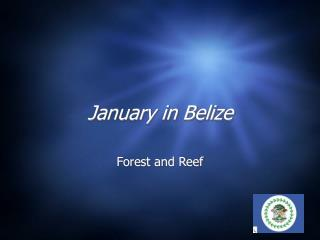 January in Belize