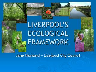 LIVERPOOL'S ECOLOGICAL FRAMEWORK