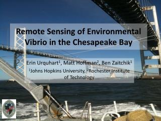 Remote Sensing of Environmental Vibrio in the Chesapeake Bay