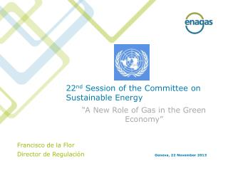 22 nd Session  of  the Committee on Sustainable Energy
