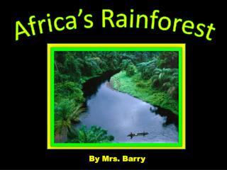 Africa's Rainforest