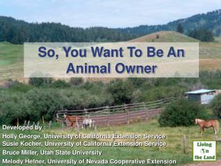So, You Want To Be An Animal Owner