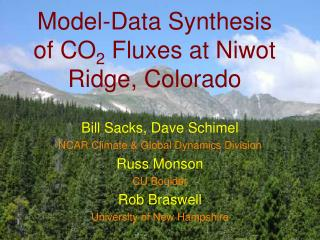 Model-Data Synthesis of CO 2  Fluxes at Niwot Ridge, Colorado