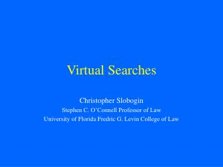 Virtual Searches