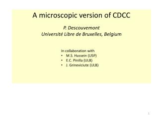 A  microscopic  version of CDCC P. Descouvemont Université Libre de Bruxelles,  Belgium