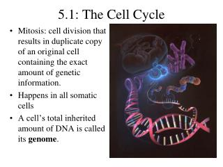 5.1: The Cell Cycle