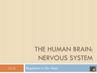 THE HUMAN BRAIN: NERVOUS SYSTEM