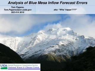 Analysis of Blue Mesa Inflow Forecast Errors
