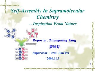 Self-Assembly In Supramolecular Chemistry -- Inspiration From Nature