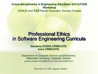 Professional Ethics  in Software Engineering Curricula