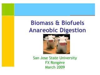 Biomass & Biofuels Anareobic Digestion