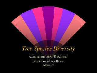 Tree Species Diversity